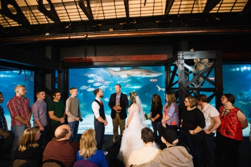 blackboxphotography anna alex wedding-100